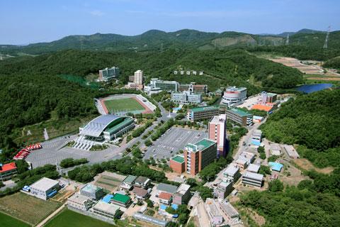 신성대학교(만화애니메이션과)